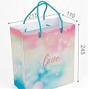 Пакет подарочный. ПР001-о5. 215*245*110 мм. «Love is everywhere»
